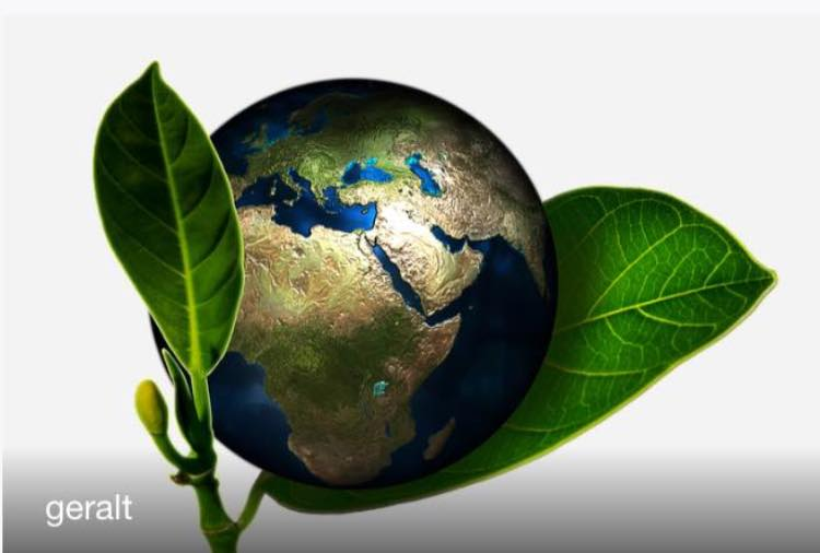 Gaia ed Eywa - madre naturale